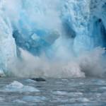 climat fonte de la calotte glacieire