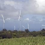 éolienne énergie énergie renouvelable agriculture canne à sucre