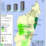 Madagascar-Agriculture